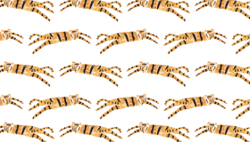 Slider_tigers-pattern