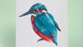3-Flea-Louise-Francis-Kingfisher