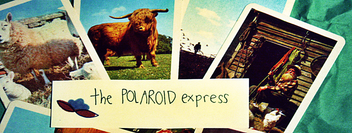 The Polaroid Express stall at the Dublin Flea Christmas Market 2015